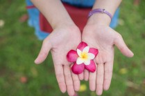 autumn-flower-girl-hands_39704-1594