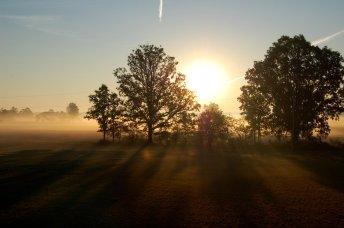 sunrise-1362773